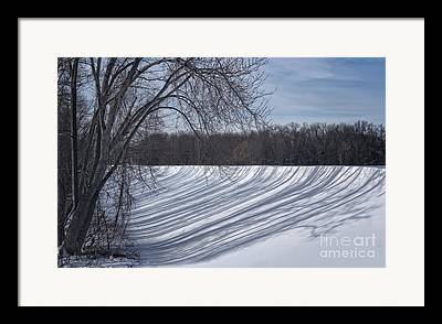 Shadowplay Framed Prints