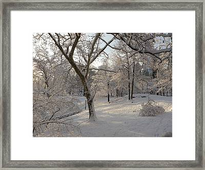 Shadows On Snow Framed Print by Winifred Butler