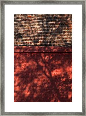 Shadows On The Wall Framed Print by Karol Livote