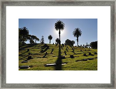 Shadows Framed Print by Pamela Schreckengost