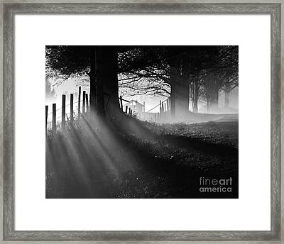 Framed Print featuring the photograph Shadows by Paul Noble