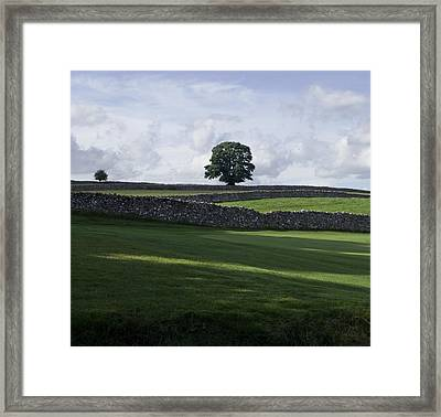 Framed Print featuring the photograph Shadows by Sally Ross
