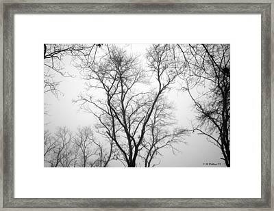 Shadows Through Time Framed Print by Brian Wallace