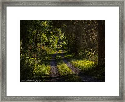 Shady Country Lane Framed Print by Paul Herrmann
