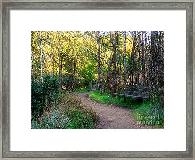 Framed Print featuring the photograph Shady Dell by Kate Brown