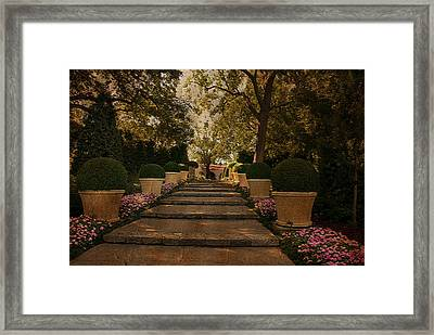 Shady Garden Walk Framed Print by Cindy Rubin