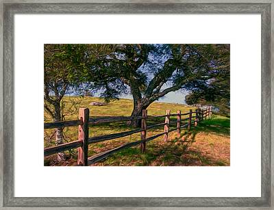 Shady Oak Framed Print