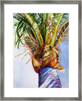 Shady Palm Tree Framed Print