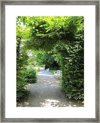 Framed Print featuring the photograph Shady Retreat by Pema Hou