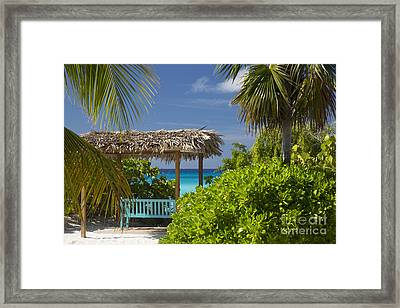 Shady View - Bahamas Framed Print by Brian Jannsen