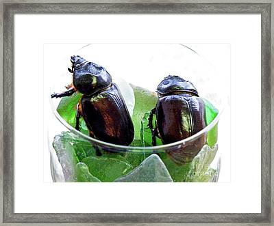 Shaken Not Stirred Framed Print by Joe Jake Pratt