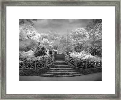 Shakespeare's Garden Infrared Framed Print by Jessica Jenney