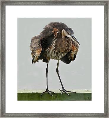 Shaking - # 2 Framed Print by Paulette Thomas