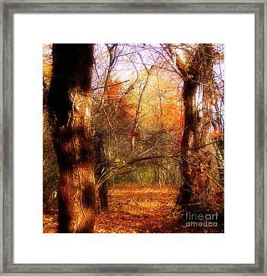 Shall We Travel Through Framed Print