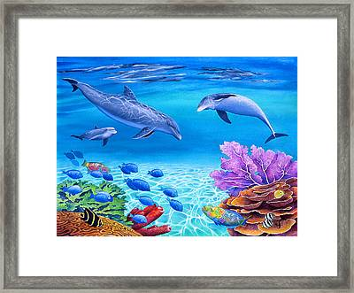 Shallow Behaviour Framed Print by Carolyn Steele