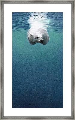 Shallow Dive Framed Print