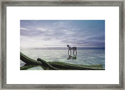 Shallows Framed Print by Cynthia Decker
