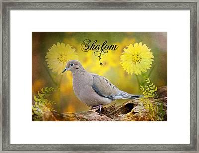 Shalom Framed Print by Bonnie Barry