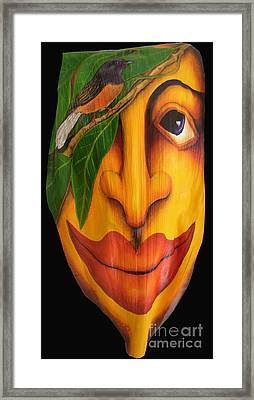 Shama Shadow Framed Print