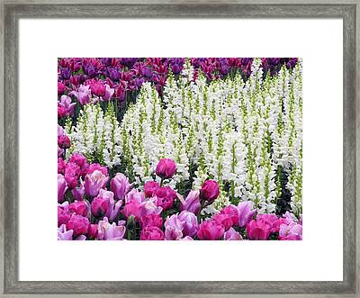 Framed Print featuring the photograph Shape Of Flowers by Yue Wang