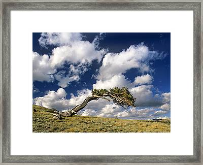 Shape Of The Wind Framed Print