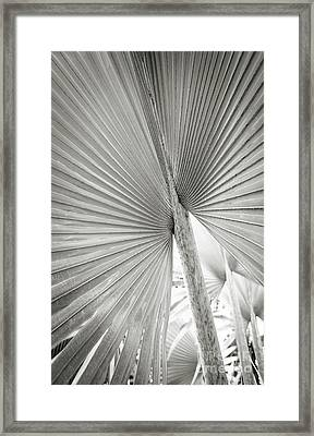 Framed Print featuring the photograph Shapes Of Hawaii 8 by Ellen Cotton
