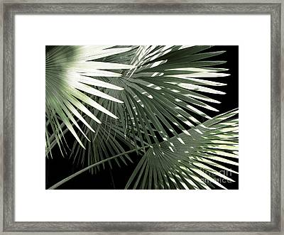 Shapes Of Hawaii Framed Print