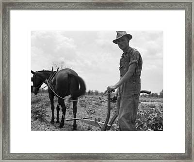 Sharecropper's Son, 1937 Framed Print by Granger