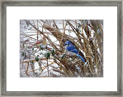 Framed Print featuring the photograph Sharing by Brenda Bostic