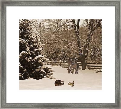 Sharing. Framed Print by Kelly Nelson