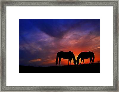 Sharing Supper Framed Print