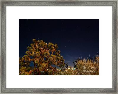Sharing The Land Framed Print by Angela J Wright