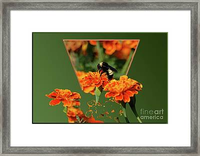 Framed Print featuring the photograph Sharing The Nectar Of Life by Thomas Woolworth