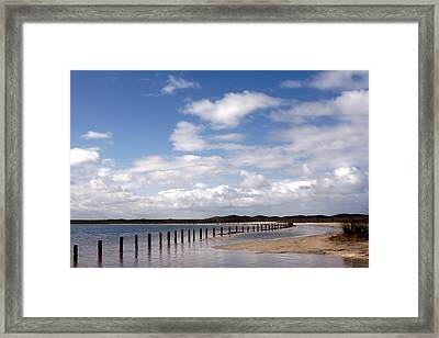 Shark Bay Western Australia Framed Print