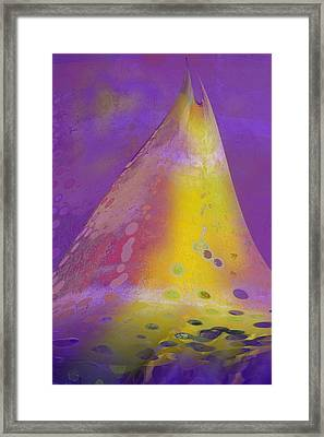 Shark Fin Framed Print by Constance Krejci