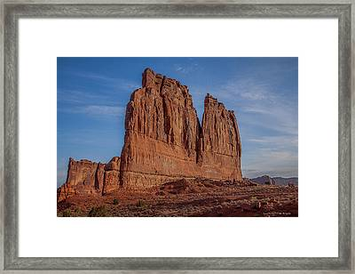Sharks Fin Framed Print