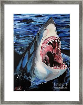 Sharks Get Smart Framed Print by Lambert Aaron