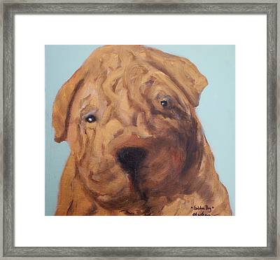 Framed Print featuring the painting Sharpei - Golden Boy by Laura  Grisham