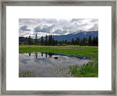 Shasta Reflections Framed Print