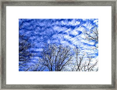 Framed Print featuring the photograph Shattered Skies by Candice Trimble