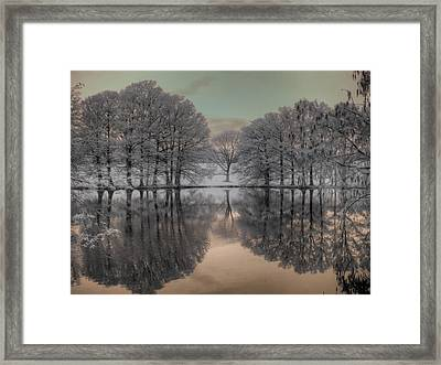 Shaw Nature Reserve Framed Print by Jane Linders