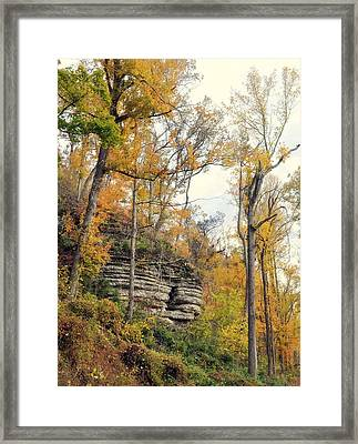 Framed Print featuring the photograph Shawee Bluff In Fall by Marty Koch