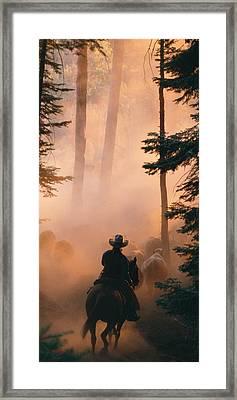 Shayna Framed Print
