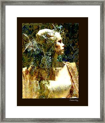 She 2 Framed Print