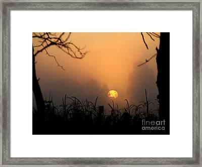 She Awake's Framed Print