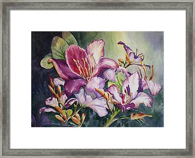 She Love Radiant Orchids Framed Print by Roxanne Tobaison