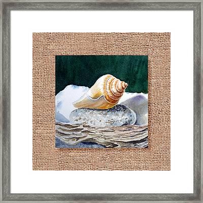 She Sells Seashells Decorative Design Framed Print by Irina Sztukowski
