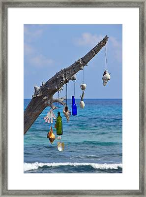 She Sells Seashells Framed Print by Skip Hunt