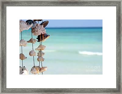 She Sells Seashells Framed Print by Sophie Vigneault