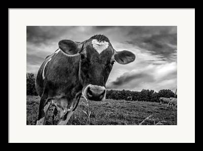 Maine Farm Framed Prints